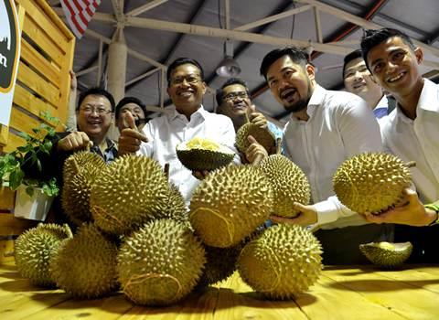 馬來西亞將在南寧舉辦榴蓮節(圖)